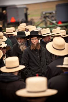 Amish: A plain clothed Mennonite sect living mostly in Ohio and Pennsylvania; western media has an odd obsession with them.
