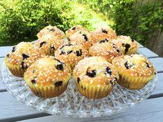 Glutenfria hastbullar med blåbär