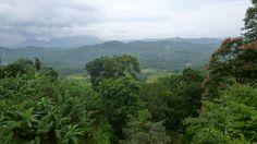 Blick aus dem Zug von Nanu Oya nach Kandy - Sri Lanka