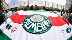 Palmeiras vive bom momento no Campeonato Brasileiro