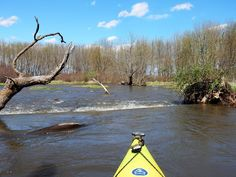 This section of Piscasaw Creek near Belvidere, Illinois, was almost a paddling trip if not for some serious caveats like being dangerous and/or illegal. #kayakspots
