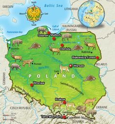 Poland | TIME For Kids Poland Map, Poland Travel, Poland Culture, Poland Girls, World Thinking Day, Baltic Sea, Roadtrip, Krakow, Kids Education