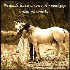 fantasy quote unicorn friends www.facebook.com/fairiesmythsandmagic