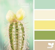 .master bedroom colors?