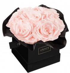 Handgemachte Flowerbox mit haltbaren Rosen, die bis zu drei Jahre blühen. Schnell und sicher online bestellen. Ted Baker, Tote Bag, Bags, Handbags, Carry Bag, Taschen, Tote Bags, Purse, Purses