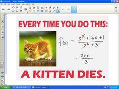 Math = Love: Rational Functions And Killing Kittens I so have to remember this!!