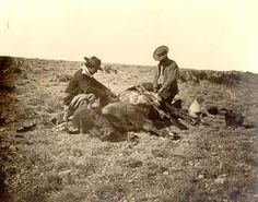 Buffalo Hunt in Taylor County, Texas 1874