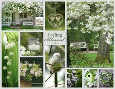 Greens ~ love for nature and design