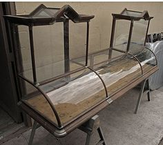 victorian era display case by Jen-ergy, via Flickr