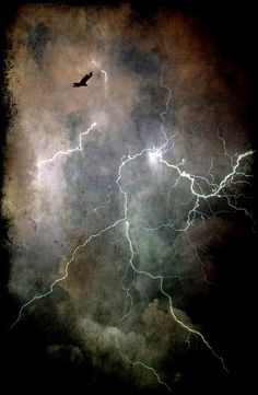 Lightning lights up the night sky Beautiful Sky, Beautiful World, Cool Pictures, Cool Photos, Thunder And Lightning, Lightning Storms, Wild Weather, Tornados, Thunderstorms