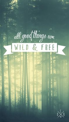 iPhone 5 background - all good things are wild and free