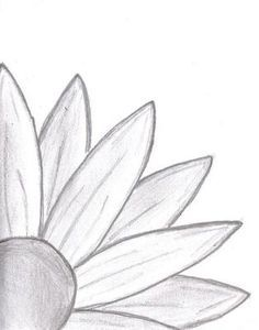 Doodle Daisy Drawing: I started drawing and ended up with this. a daisy… Doodle Daisy Drawing: I started drawing and ended up with this. Cute Easy Drawings, Cool Art Drawings, Pencil Art Drawings, Doodle Drawings, Drawing Sketches, Easy Nature Drawings, Sketching, Easy Sketches To Draw, Cute Drawings Tumblr