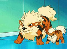 Arcanine is my favorite! :) - Funny Pokemon - Funny Pokemon meme - - Arcanine is my favorite! The post Arcanine is my favorite! :) appeared first on Gag Dad. Pokemon Gif, Pokemon Team, Pokemon Memes, Pokemon Show, Pokemon Funny, Pokemon Fan Art, Pokemon Pictures, Funny Pictures, Funny Pics