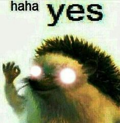 Cursed Images Discover h e l p l e s s Response Memes, No Response, Stupid Funny Memes, Haha Funny, Reaction Pictures, Funny Pictures, Laughing Funny, Quality Memes, Cursed Images