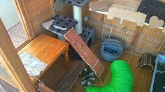 Rabbit shed setup