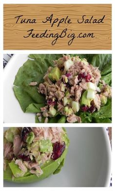 Apple Tuna Salad.  Bits of tart apple and cranberries make this the perfect tuna salad.  Eat it on greens or in an avocado.   Healthy and delicious - this is NOT your Mother''s Tuna Salad!