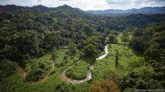 Hallazgo en Honduras/ misterio de la ciudad perdida... es sin duda una gran investigación
