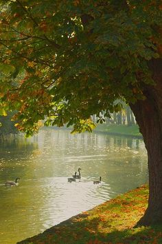 Oxford, England | Traveller. | Pinterest