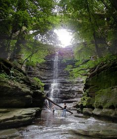 Everyone From Illinois Should Take These 8 Great Vacations Great Vacations, Vacation Trips, Vacation Spots, Vacation Ideas, Family Vacations, Weekend Trips, Day Trips, Midwest Weekend Getaways, Midwest Vacations