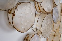 "Leslie Pearson - ""Cells"" (detail). Gut (hog casing), wire, paper."