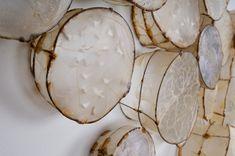 """Cells"" (detail) Leslie Pearson"
