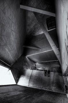 fiore-rosso: casa da música - rem koolhaas.