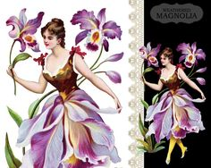 Orchid French Flower Fairy Fleur Orchidées by weatheredMagnolia