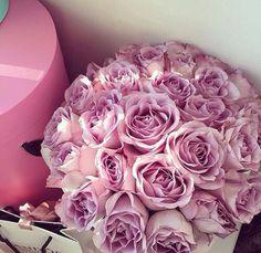 ♛ pinterest: @Princesslivy16 ♛