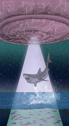 Shark Abduction