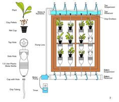Window Farm Diagram. Great way to go if you're in an apartment like we are. Now...can I actually build this? Guess we'll see