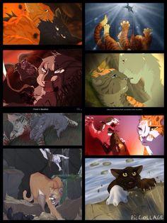 Saddest warriors deaths: Yellowfang, Flametail, Stonefur, Honeyfern, Moonflower, Swiftpaw, Feathertail, Whiteclaw