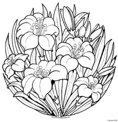 Coloring pages depicting topics and characters from the Bible. Spring Coloring Pages, Flower Coloring Pages, Coloring Pages To Print, Mandala Coloring, Coloring Book Pages, Coloring Sheets, Serger Patterns, Embroidery Patterns, Lilies Drawing