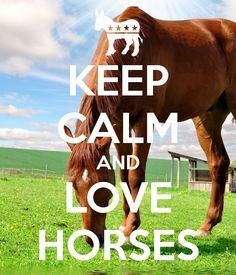 keep calm and love horses - Google zoeken