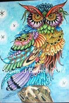 1000 Images About Owl Drawings On Pinterest Really Owl Drawings With Color
