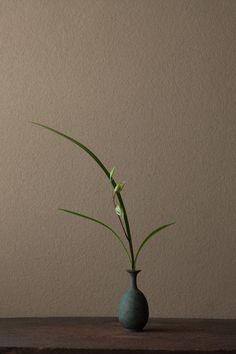2012年1月8日(日)    冬ならではの姿。楚々とした美女を見るよう。  花=寒蘭(カンラン)  器=青銅王子形水瓶(六朝時代)