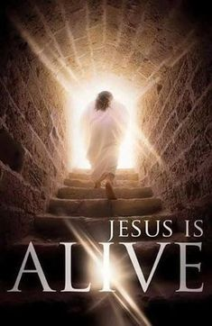 ✝️ He is the same yesterday, today and forever, Amen ✝️‼️Jesus Christ is Risen from Death! Jesus Our Savior, Christ Is Risen, Jesus Is Lord, Jesus Is Alive, He Is Alive, Sunday Sermons, Pictures Of Jesus Christ, Easter Pictures Of Jesus, Jesus Resurrection