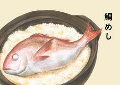 鯛めしのイラスト | 熊本のイラストレーター わたなべみきこ #illustration #魚 #鯛 #鯛飯 #料理 Kumamoto, Illustration, Design, Illustrations