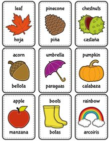 Print and cut the flash cards to learn about autumn in both languages.
