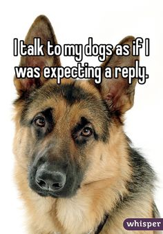 """""""I talk to my dogs as if I was expecting a reply."""""""