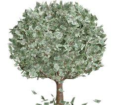 M 3 rituales para atraer dinero: Los rituales de dinero son efectivos siempre y cuando usted no los sabotee con miedos y dudas.