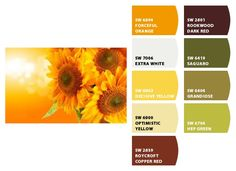 Chip It! by Sherwin-Williams...sunflower color scheme