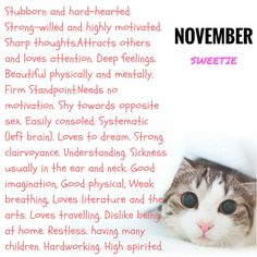 What Your Birth Month Says About Your Personality. this is so creepy but true November Born, November Quotes, November Month, Taurus And Scorpio, Scorpio Quotes, Creepy But True, Chill Quotes, Month Meaning, Horoscope Signs