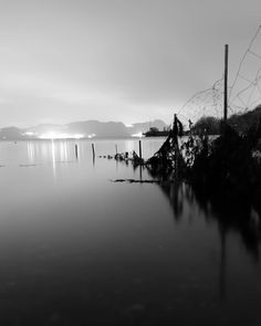 """Kim André Hansen🇧🇻Bnw på Instagram: """"The Fence. Tags #photo #photos #pic #pictures #bwgrammer #bnw_focus_on #darkroom_daydream #explore_bnw #raw_bnw #bnw_magazine…"""" Black And White Photography, Daydream, Fence, Photos, Pictures, Magazine, Celestial, Explore, Sunset"""