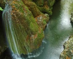 Popasul Paralela 45 şi frumoasa Cascadă Bigăr Cascade Falls, Romania, Asparagus, Trip Advisor, The Neighbourhood, Waterfall, Places To Visit, Nice, Travel