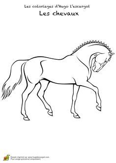 Dessin de cheval avec une belle crinière, à colorier