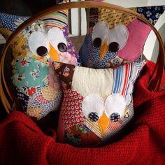 Hexi Owls