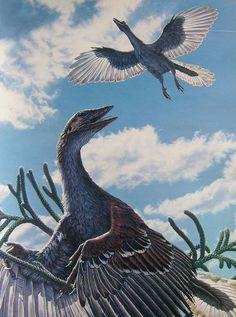 Archaeopteryx by John Gurche