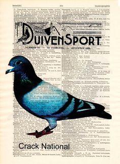 Originele prints - Race Pigeon print op een antieke originele druk - Een uniek product van Dictionary-vintage-book-page op DaWanda