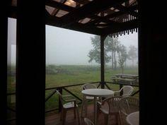 今日の朝霧フードパークは、霧の中。  ご来店くださるお客様も少し大変そう(>_ 詳しくは http://shizuokafujien.com/71497/?p=5&fwType=pin