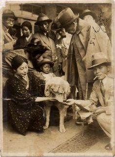 The Incredibly Heartwarming Story Of Hachiko, The Most Loving & Loyal Dog Ever Akita Dog, Hachiko Dog, Hachi A Dogs Tale, Animals And Pets, Cute Animals, A Dog's Tale, Loyal Dogs, Dog Stories, Shiba Inu